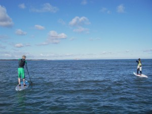 Stand Up Paddle training at Belhaven Bay